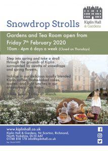 Snowdrop Strolls Poster